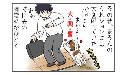 その昔、犬のうれションには体験困っていた。特に夫の帰宅時がひどく。大興奮しておもらししてしまう犬