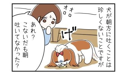 犬が朝方に吐くことは珍しくないことですが。嘔吐する犬。あれ?こないだも朝吐いてなかった?オロオロする私