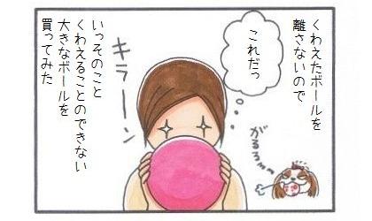 大きいボール-1