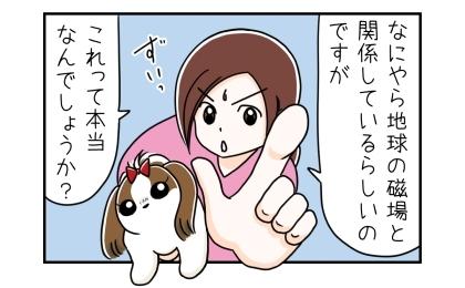 犬がうんこをする時の方向は、なにやら地球の磁場と関係しているらしいのですが、これって本当なのでしょうか?