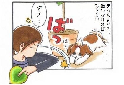 間一髪ウンベラータ-4