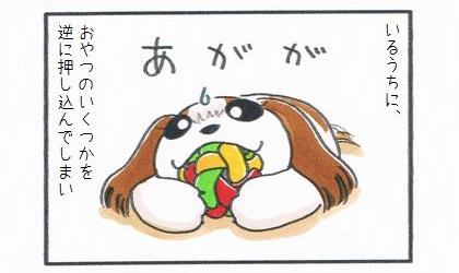 マカロニラバーボールにおやつのいくつかを逆につめこんでしまい。犬がおもちゃを咥えて困り顔