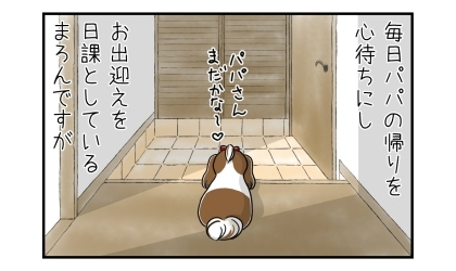 毎日パパの帰りを心待ちにし、お出迎えを日課としている犬ですが