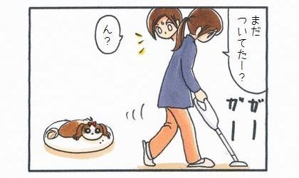 まだ犬にひっつき虫がついてたー?掃除機をかけて歩く飼い主
