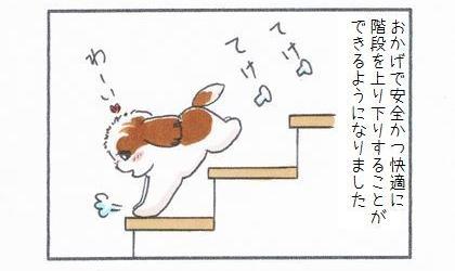 おかげで犬が安全かつ快適に階段を上り下りすることができるようになりました