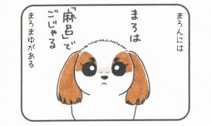 犬にはまろまゆがある。まろは「麻呂」でごじゃる