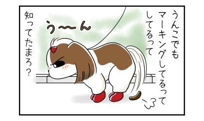 うんこでもマーキングしてるって、知ってた?うんこをする犬