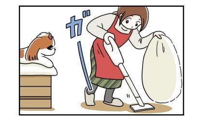 ソファの上に移動した犬。その隙にビーズクッションをどかして掃除機をかける