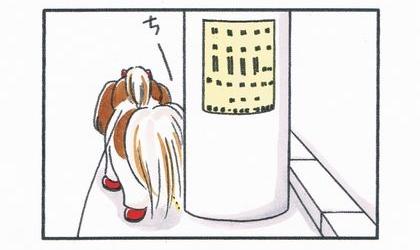 犬が電柱におしっこをしている