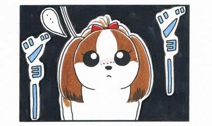 vs 大型犬 ~縄張り争い~-3
