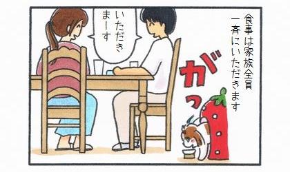 食事は家族全員一斉にいただきます。犬も同時に食べ始める
