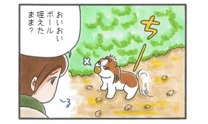 拾ったボールとお散歩-3