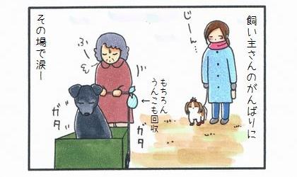 もう一匹のカートに乗った犬-4