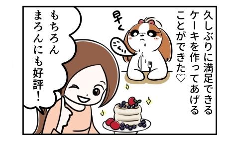 久しぶりに満足できるケーキを作ってあげることができた。もちろん愛犬にも好評!