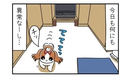 今日も何にも異常なーし(落ちてない)。チッと舌打ちしてキッチンを立ち去る犬