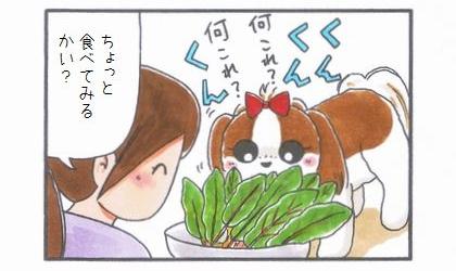 好みではない野菜-2