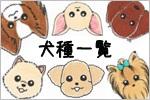 犬種一覧バナー