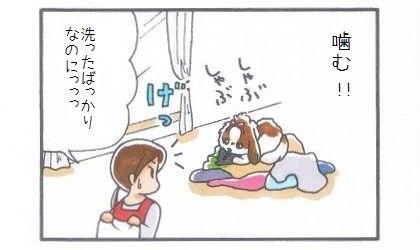 洗濯物-3