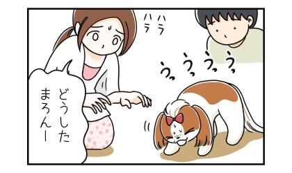 吐きそうな犬。どうした?ハラハラする飼い主