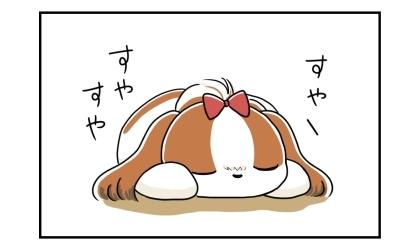 すやすやと眠る犬