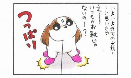 犬用レインブーツに挑戦! 3-1