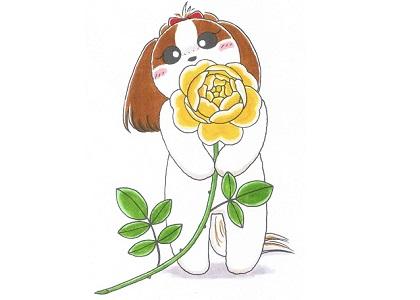 黄色いバラを持ったシーズー