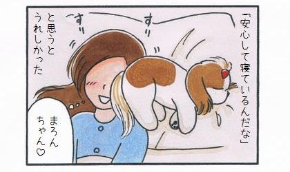 犬が「安心して寝ているんだな」と思うとうれしかった。犬のお尻に顔をすりすりする飼い主