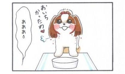垂れ耳犬の宿命-4