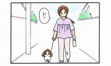 犬と散歩に出てみると