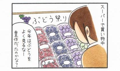 秋の味覚♪ぶどう-1