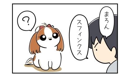 犬にむかって「スフィンクス」とコマンド(命令)する夫。意味が分からない犬