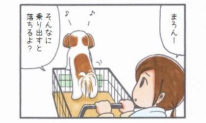 ペット用カート☆箱乗り編-2
