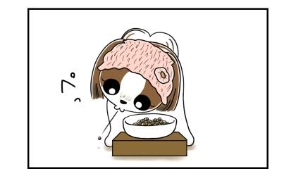 犬が口の中からドッグフードを吐き出した!