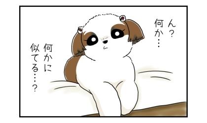 ショートボブカットの犬の画像を見て、ん?何か…何かに似てる…?