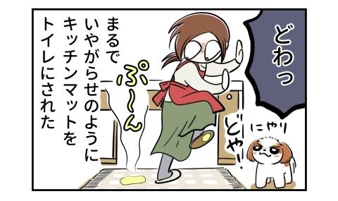 キッチンマットには犬のおしっこが。どや顔でにやりと笑う犬。まるで嫌がらせのようにキッチンマットをトイレにされた