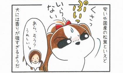 秋の味覚♪松茸~-4
