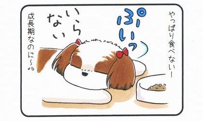 食が細かったまろんのお話 1-4