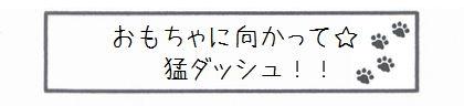 おもちゃに向かって☆猛ダッシュ!!-0