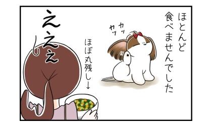 犬は水と野菜で増量したドッグフードをほとんど食べませんでした(ほぼ丸残し)
