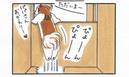 夫が帰宅。お出迎えしたい犬、玄関への飛び出し防止の板を乗り越えようと飛び跳ねる