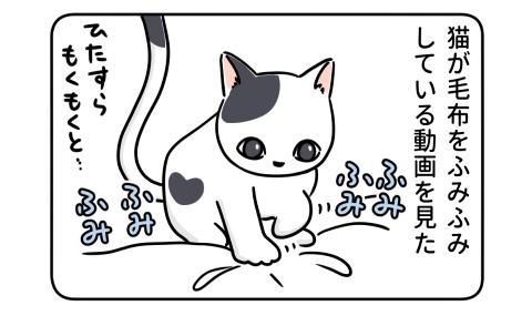 猫が毛布をふみふみしている動画を見た
