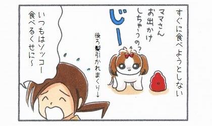 犬はコングワブラーに詰めたおやつをすぐに食べようとしない。いつもは速攻で食べるくせに