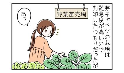 芽キャベツの栽培は難易度が高いので封印したつもりだったが。ホームセンターの野菜苗売場で買い物中