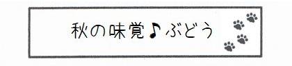 秋の味覚♪ぶどう-0