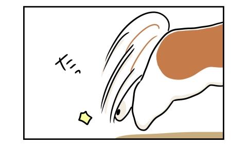 犬がヨーグルトに向かって飛びかかる