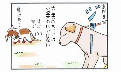 vs 大型犬 ~縄張り争い~-4