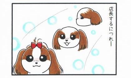 「背中にハートマークがある犬」-3