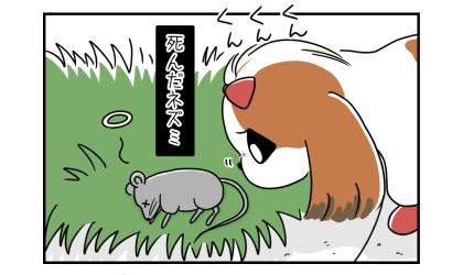 犬が嗅いでいたのは、死んだネズミだった