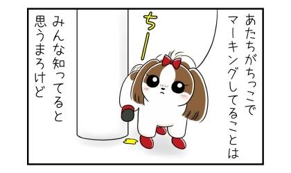 あたちがおしっこでマーキングしてるってことは、みんな知ってると思うけど。電柱におしっこをする犬