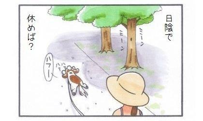 真夏のお散歩-4